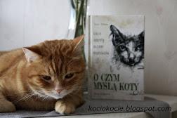 czytanie z kotem