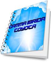 brochure gamma ibrida toyota