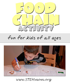 Food Chain Activity for kids: from STEMmom.org