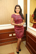 Vishaka singh at rowdy fellow event-thumbnail-19