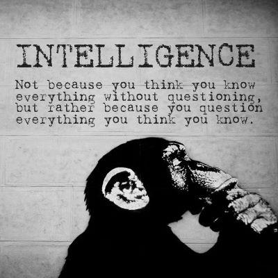 intelligence is because you question not because you know