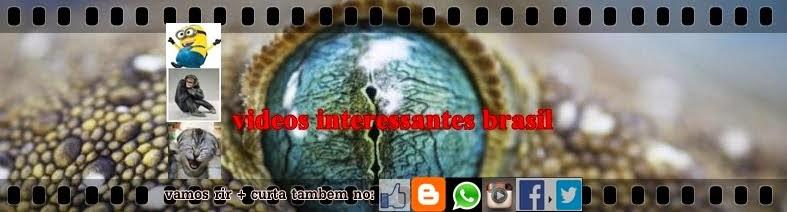 VIDEOS INTERESSANTES BRASIL