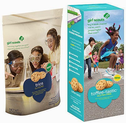 Girl Scouts Chocolate Covered S Mores