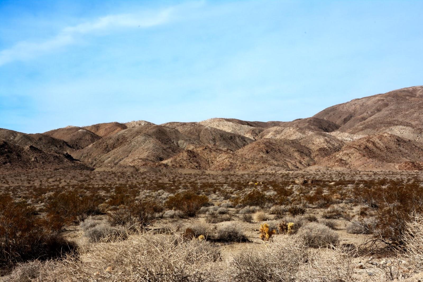 stillhowlyntravels anza borrego desert adjustment phase