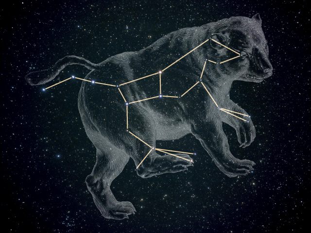 Ursa Major (the Great Bear)