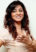 Shilpi sharma sizzling photos-thumbnail-48