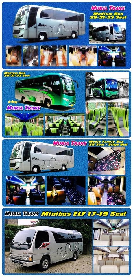 New !! Bus Muria ELF : 15, 19 Seat -- Bus : 25 Seat + Bed Set, 29, 31, 33 Seat Klik Pada Gambar..