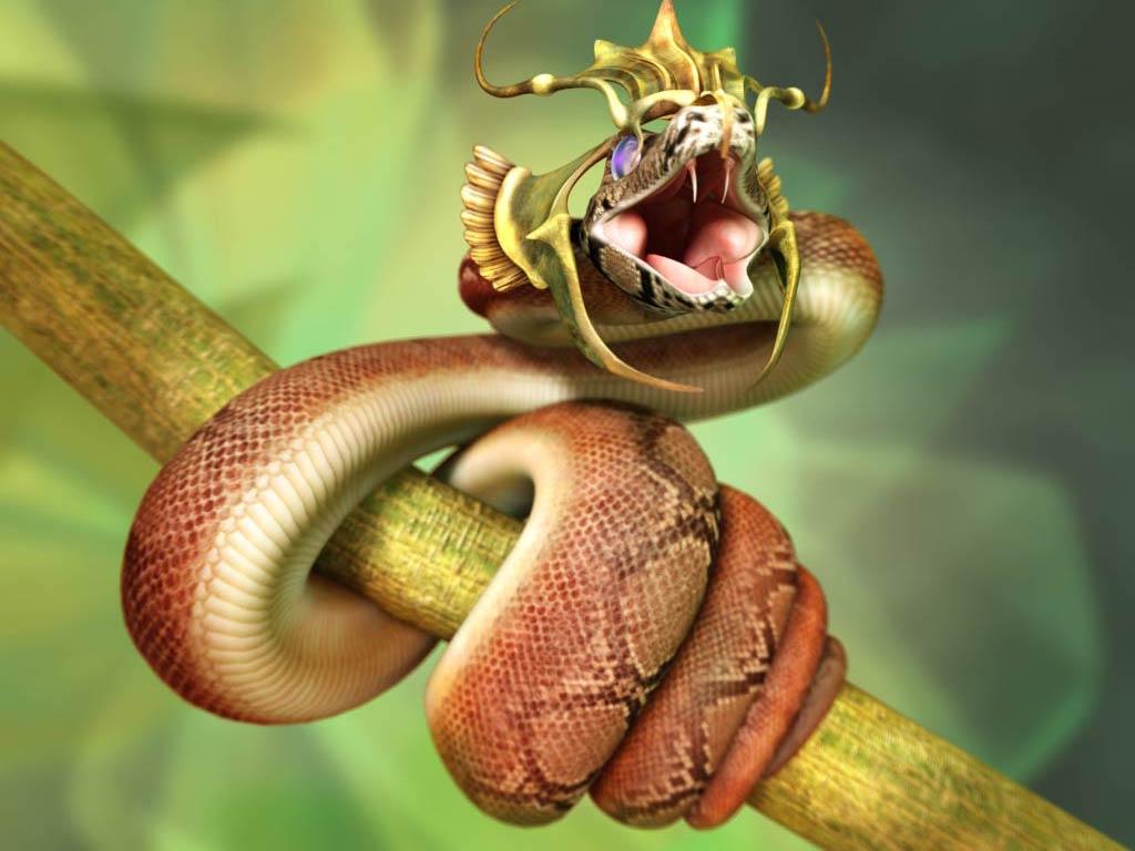 http://2.bp.blogspot.com/-dI0CdhPzowg/TwZtvxfSBJI/AAAAAAAABO0/md52tbKgcdE/s1600/Snakes-Wallpapers-04.jpg
