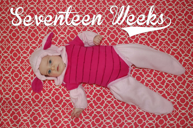 http://meetthegs.blogspot.com/2013/10/lilly-anne-17-weeks.html