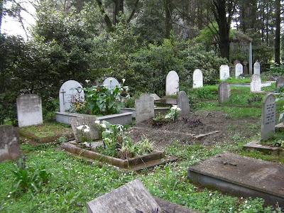 long views of mum grave