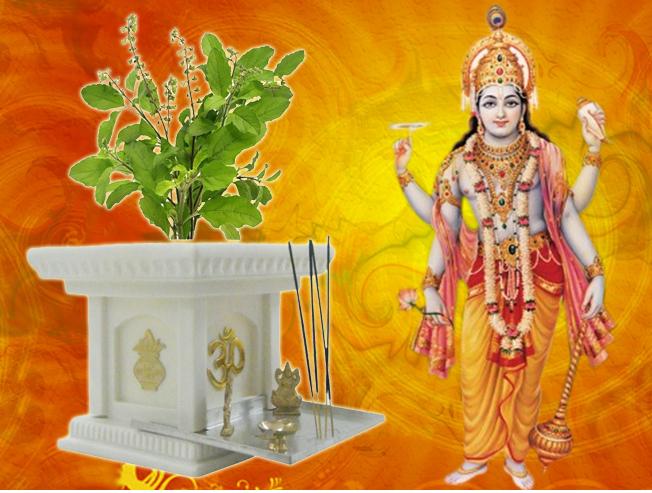 तुलसी के पौधे का धार्मिक और औषधीय महत्व