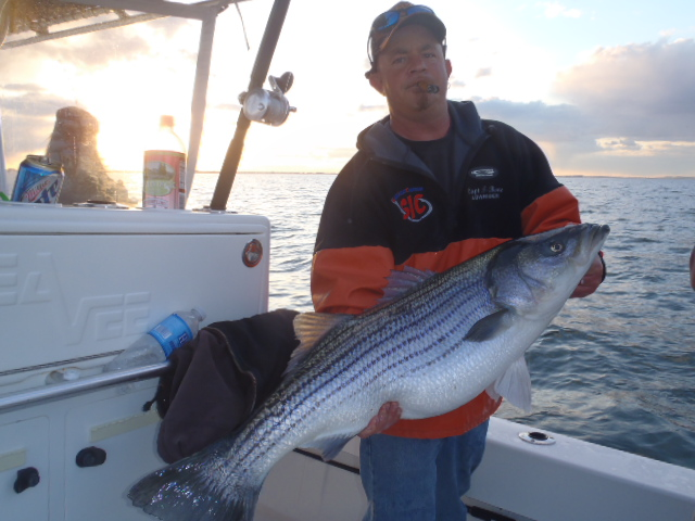 Shark inlet charters belmar nj fishing charter reports for Fishing report nj