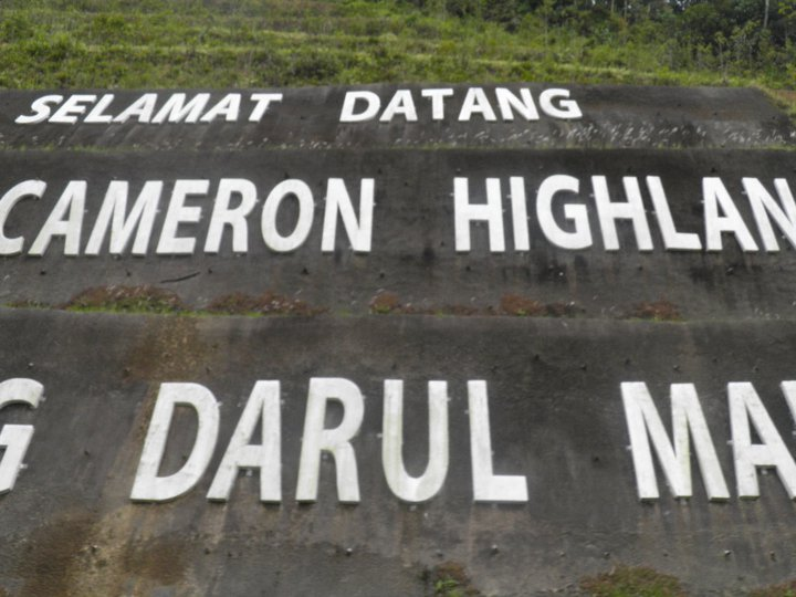 Welcome to Cameron Highland