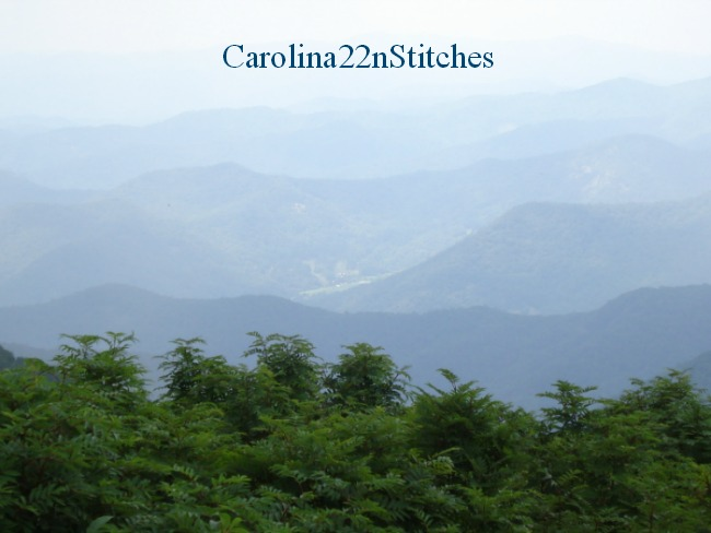 Carolina22nStitches