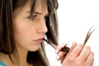 alasannya ialah kurang tepatnya anda melaksanakan perawatan terhadap rambut Inilah Penyebab rambut bercabang