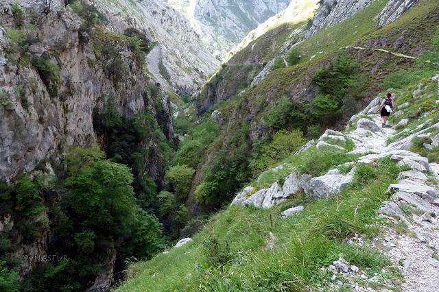 Bajando de Bulnes por el Desfiladero del Tejo