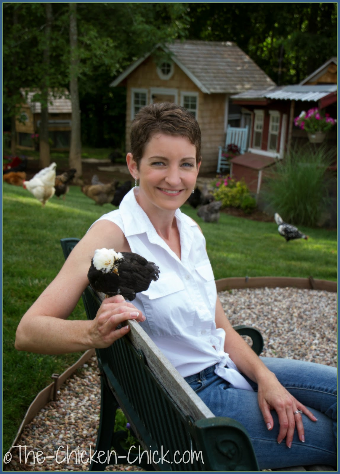 Kathy Shea Mormino, The Chicken Chick