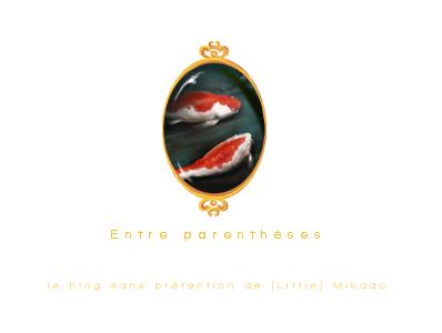 [ E n t r e      p a r e n t h è s e s ] - Le blog de [Little] Mikado