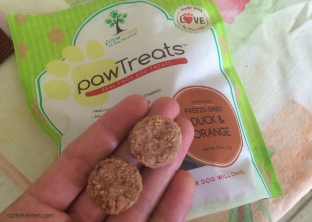pawTree Duck & Orange pawTreats