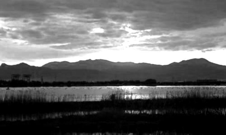 Laguna Santa Gilla