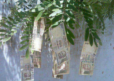 If Money Grow Trees, Kaash Jhaad ko Paisa Lagta