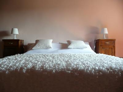 appartamento, vacanza, last minute, campagna, toscana, affitto, camera da letto matrimoniale, agriturismo, colline pisane, Terra Verde artfarm