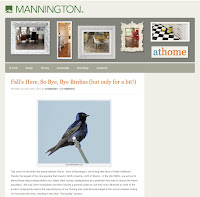 Natural Pesticides – Mannington Mills Goes for the Birds