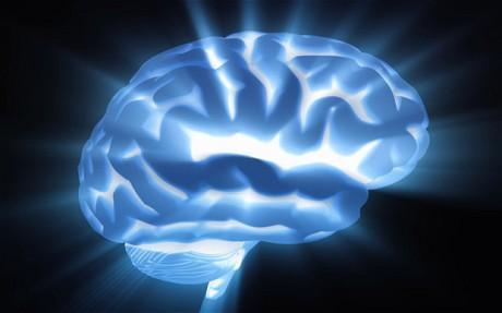 Brain - حقائق مذهلة عن العقل البشري