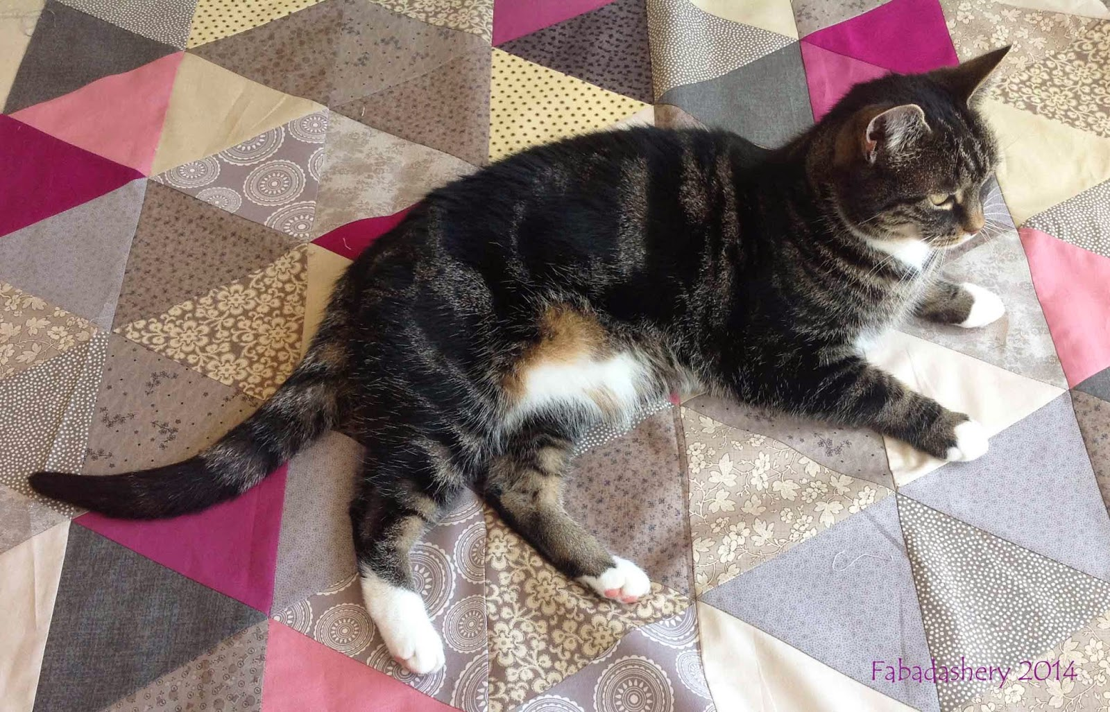 Suzi the cat helps with the Triangle Quilt Along