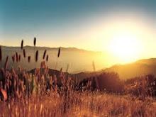 Por do Sol de uma Fazenda