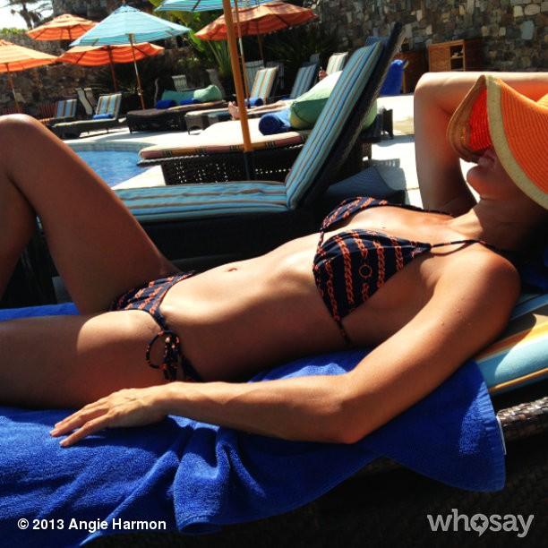 Angie Harmon sizzles in bikini as she turns 45 Fox News