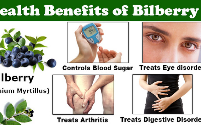 10 Health Benefits of Bilberry