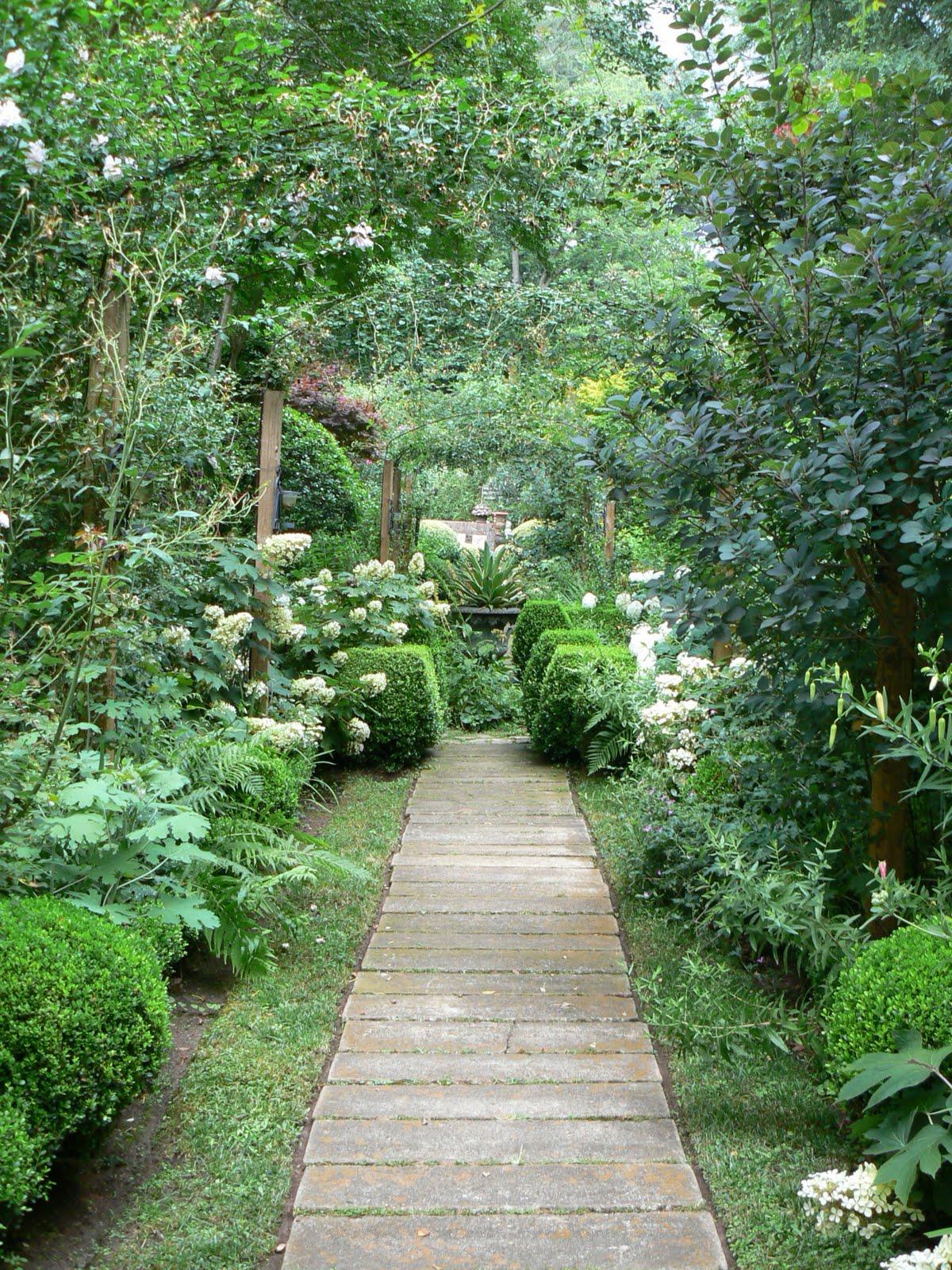 Garden Photo of the Day: Aug 1, 2011