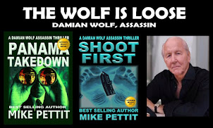 DAMIAN WOLF ASSASSIN SERIES