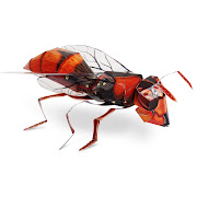 Rivetz Giant Hornet Extreme Card Sculpture kit review