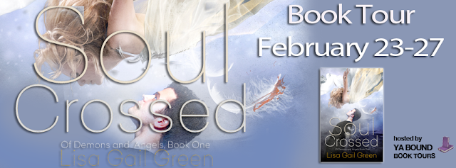 http://yaboundbooktours.blogspot.com/2015/01/blog-tour-sign-up-soul-crossed-of.html