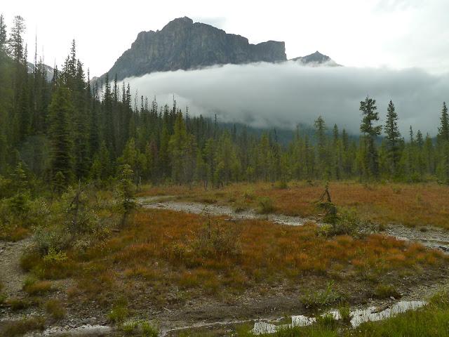 yoho national park, canadian rockies,