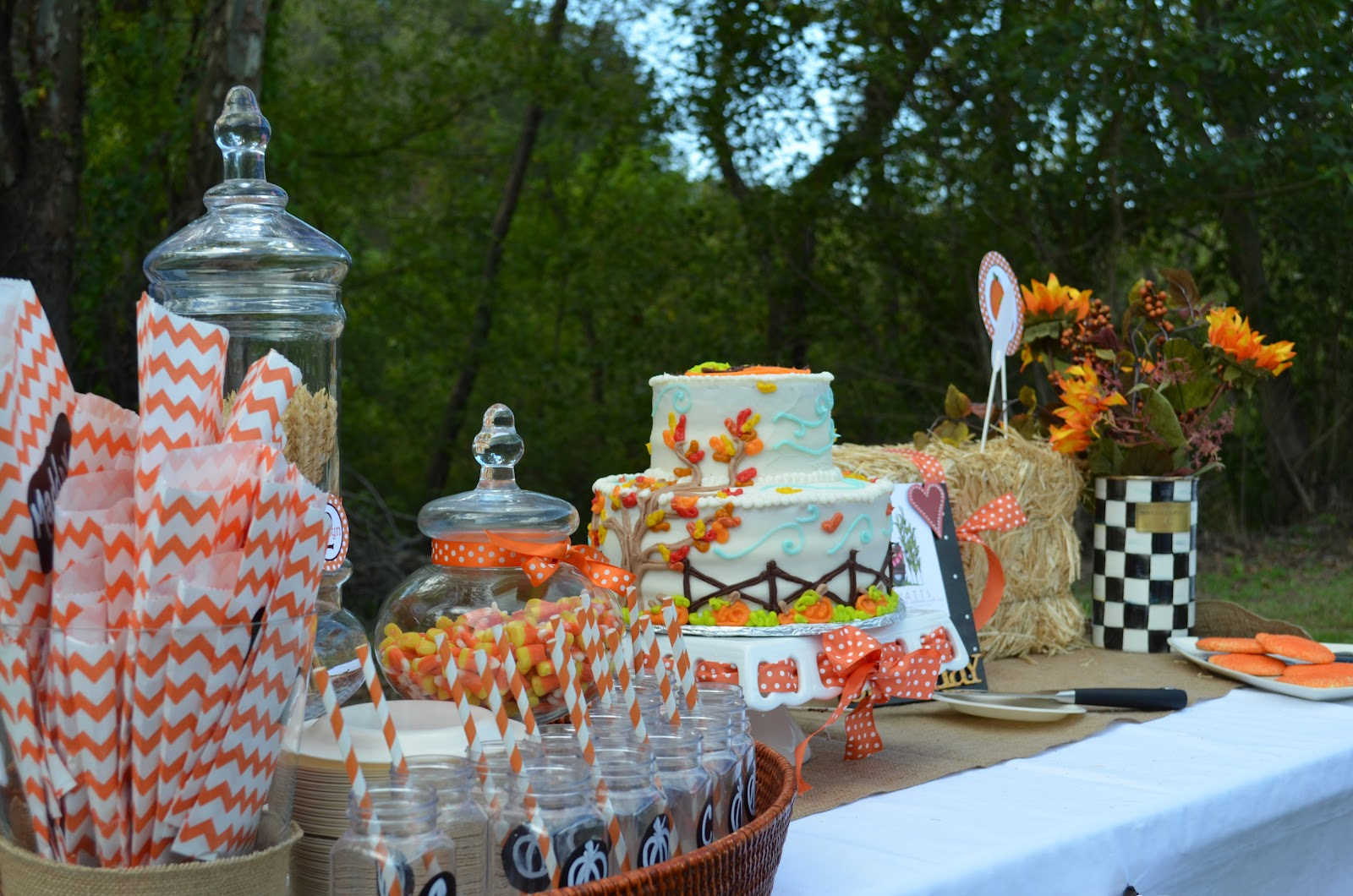 southern blonde: carsyn's fall festival- part i