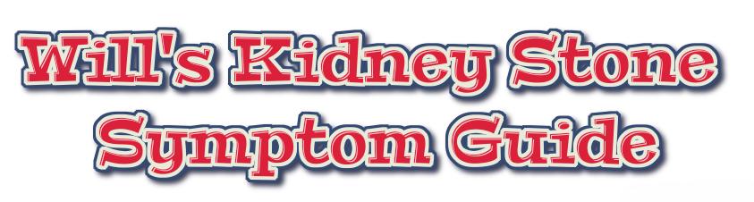 Will's Kidney Stone Symptoms Guide