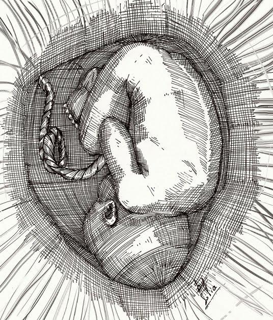 Fotos de dibujos de fetos - Imagui