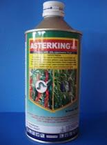 ASTERKING