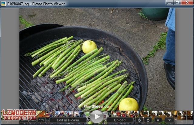 Google Picasa v3.9 - Software Photo Manager