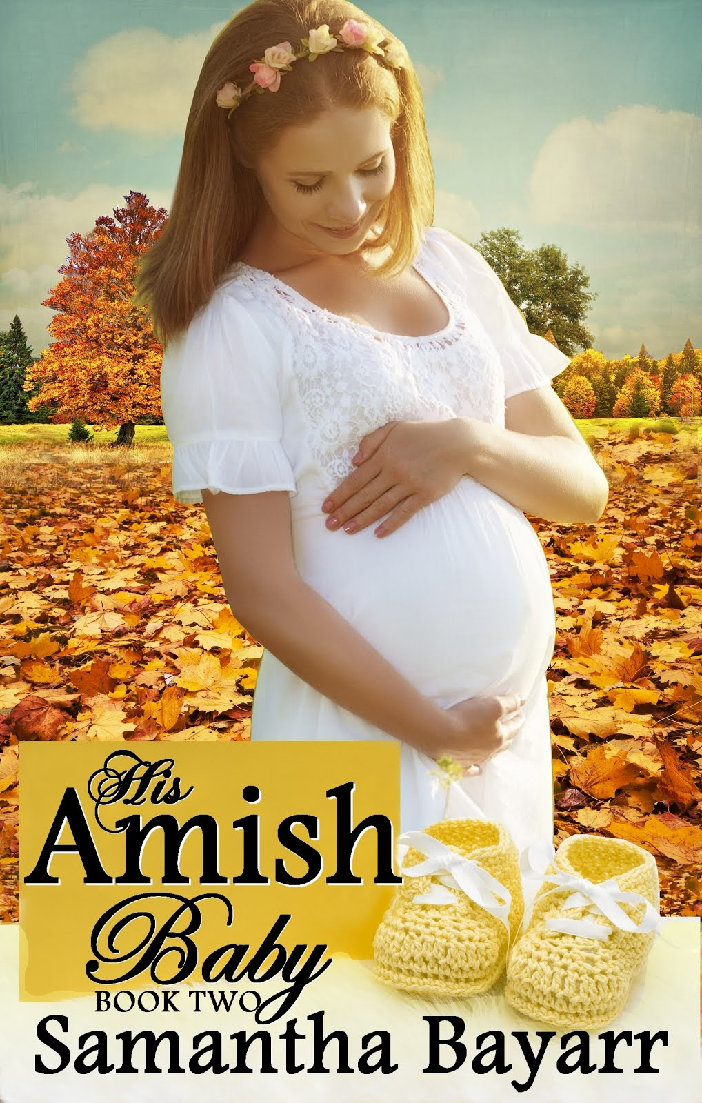 His Amish Baby: Book Two