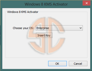 "one more time your version of OS and click ""Activate Windows 8"