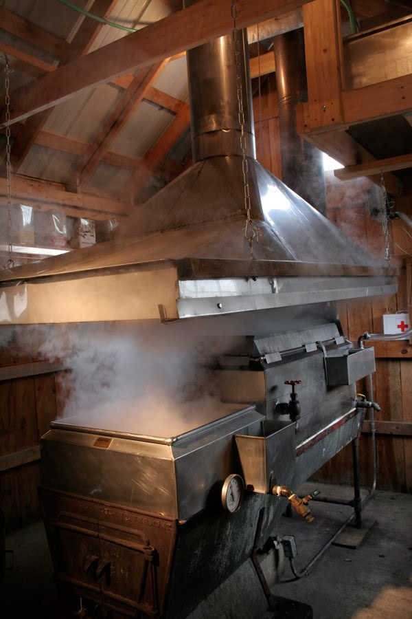 Did You Know It Takes 40 Gallons Of Sap To Boil Down And Make 1 Gallon Pure Maple Syrup Makes Understand Why The Good Stuff Is So Expensive Doesnt