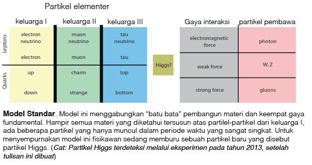 model standar fisika, keluarga partikel dan gaya fundamental