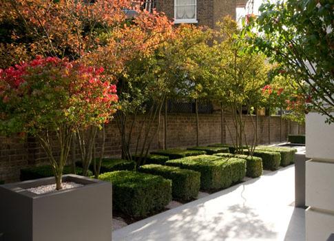 Chelsea garden uk phillip nixon design create my dream for The garden design sk