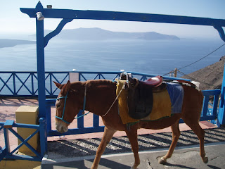 Santorini - Go up the Caldera on a mule ride - Greece
