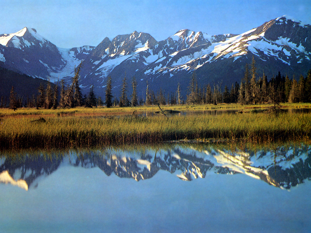 Alaska usa tourist destinations for Fishing in anchorage
