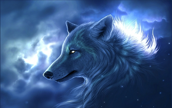wallpaper magnificent wolf wallpapers
